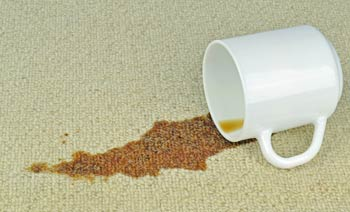Stain Removal & Deodorizing